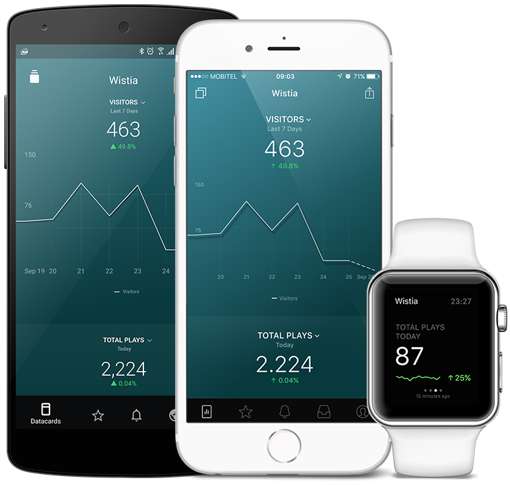 Wistia metrics and KPI visualization in Databox native mobile app