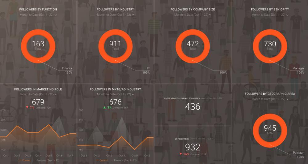LinkedIn (Demographics overview) template