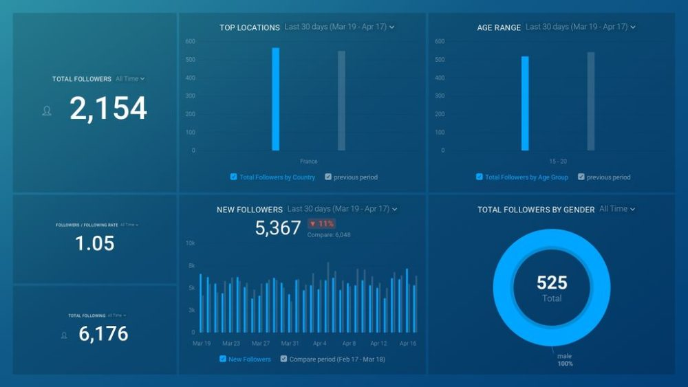 Instagram Business (Audience Overview) dashboard template