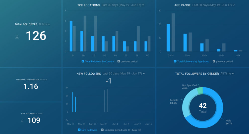 Instagram Business (Audience Overview) template dashboard